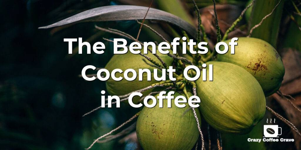 The Benefits of Coconut Oil in Your Coffee