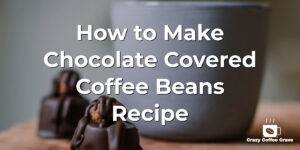 How to make Chocolate Covered Coffee Beans Recipe