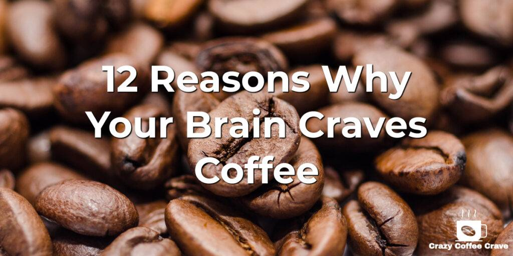 12 Reasons Why Your Brain Craves Coffee