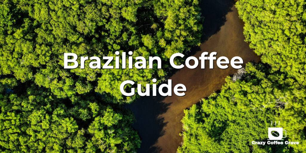 Brazilian Coffee Guide: All You Need to Know