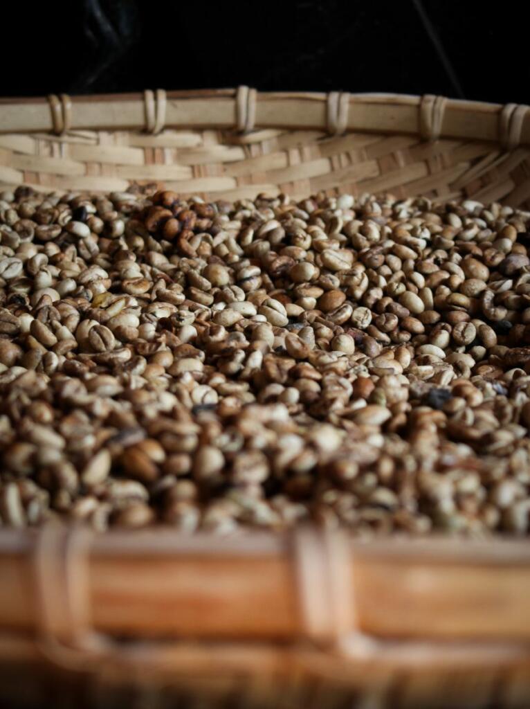 roasted coffee bean