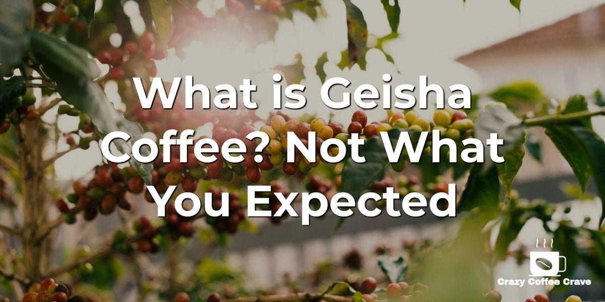 What is Geisha Coffee_