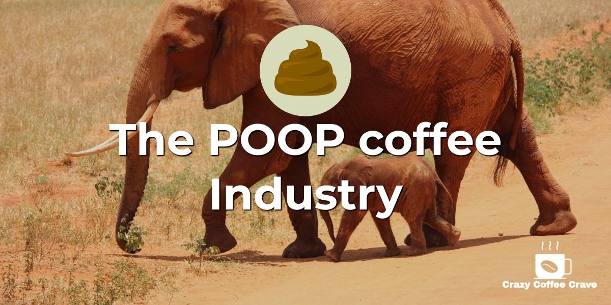 poop coffee