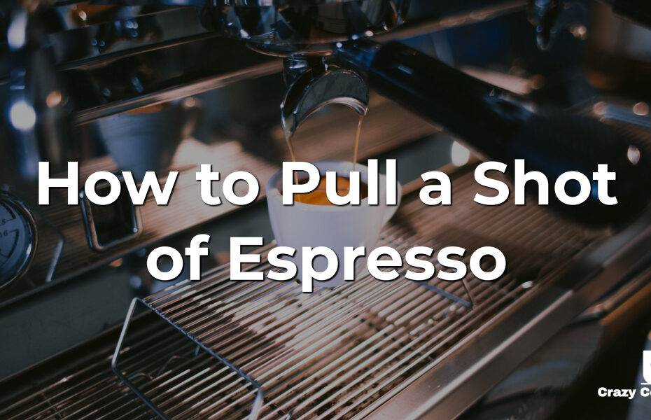 How to Pull a Shot of Espresso