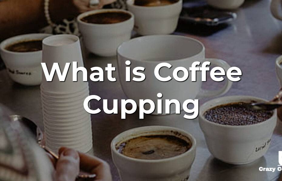 What is Coffee Cupping and How to Have Fun at Home