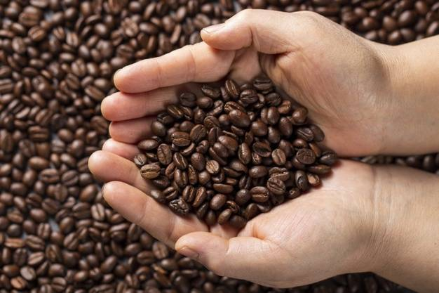 Different Types Of Coffee Beans